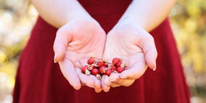 L'endometriosi e il mito di Persefone
